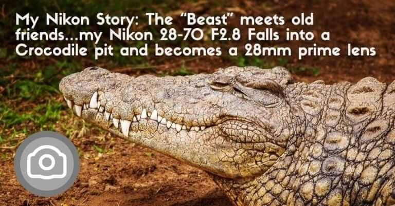 """My Nikon Story: The """"Beast"""" meets old friends…my Nikon 28-70 F2.8 Falls into a Crocodile pit and becomes a 28mm prime lens"""
